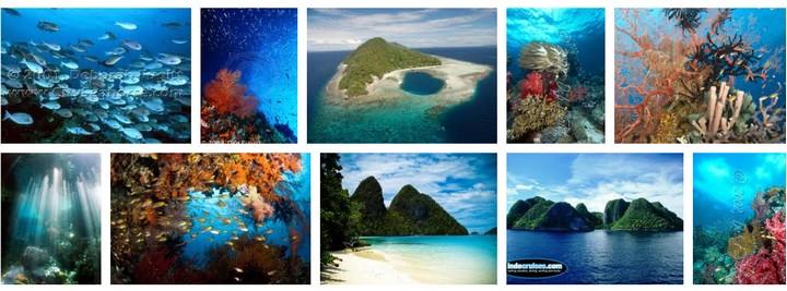 Raja Ampat sur Google images